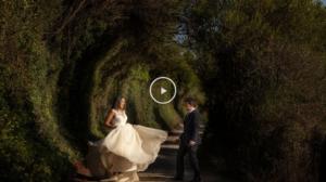 video de fiesta de bodas